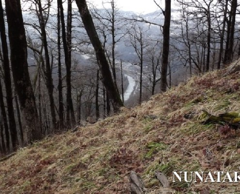 Гора Кума