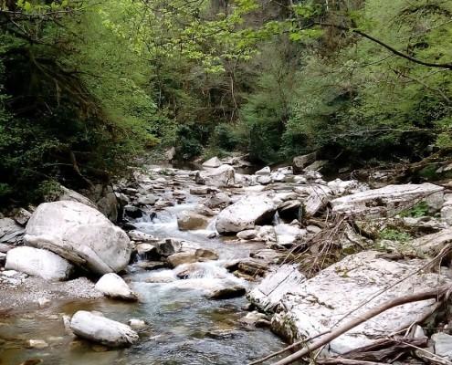 Река Восточная Хоста