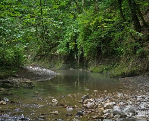 Река Псахо