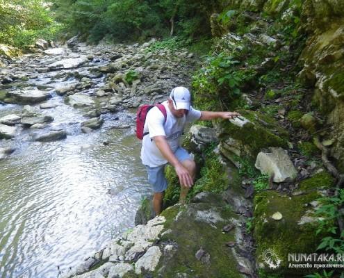 Каменное русло реки