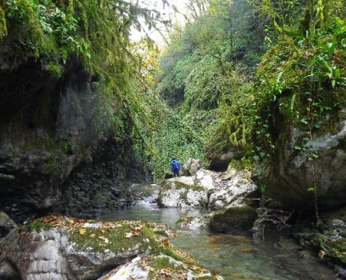 Каньон ручья Сванидзе