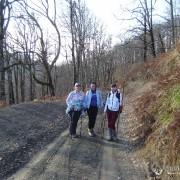 По дороге на г.Пикет