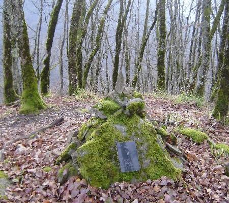 могила Ефремова