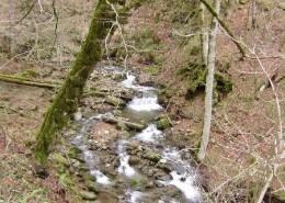Река Монашка
