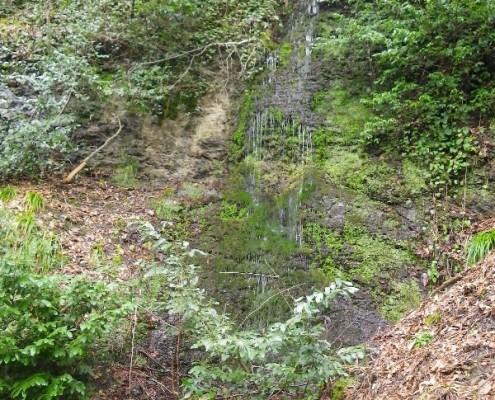 Водопад на дороге