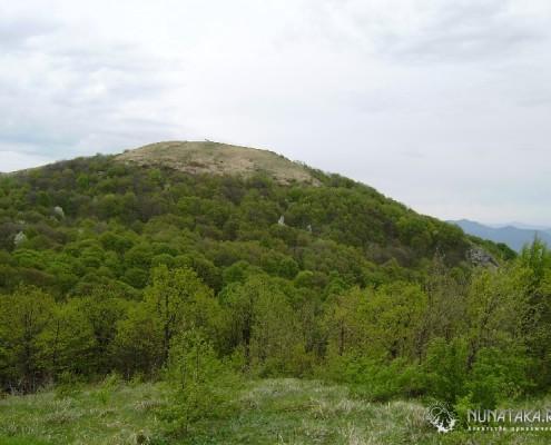 Вершина Семашко