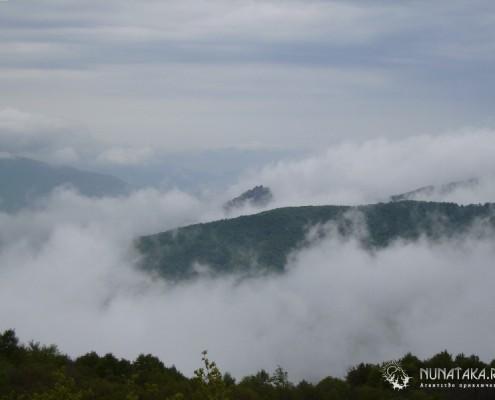 Индюк в тумане