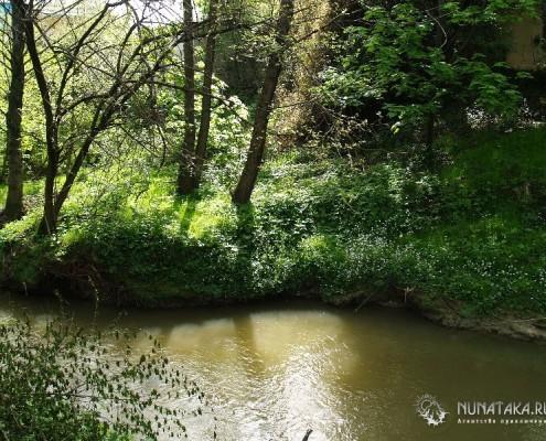 Берега реки Херота