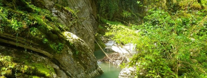Отвесные стены каньона Кудепсты