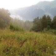 Архыз. Август. После дождя