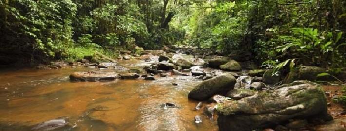 Национальный парк Гор Махале
