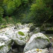 Река Глубокий Яр (Сочи)