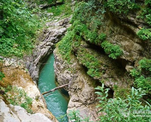 Природа Гуамского ущелья