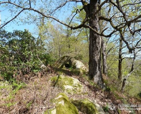 Каменный гребень