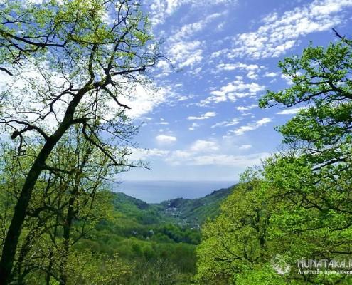 Долина реки Чухукт