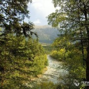 Река Архыз