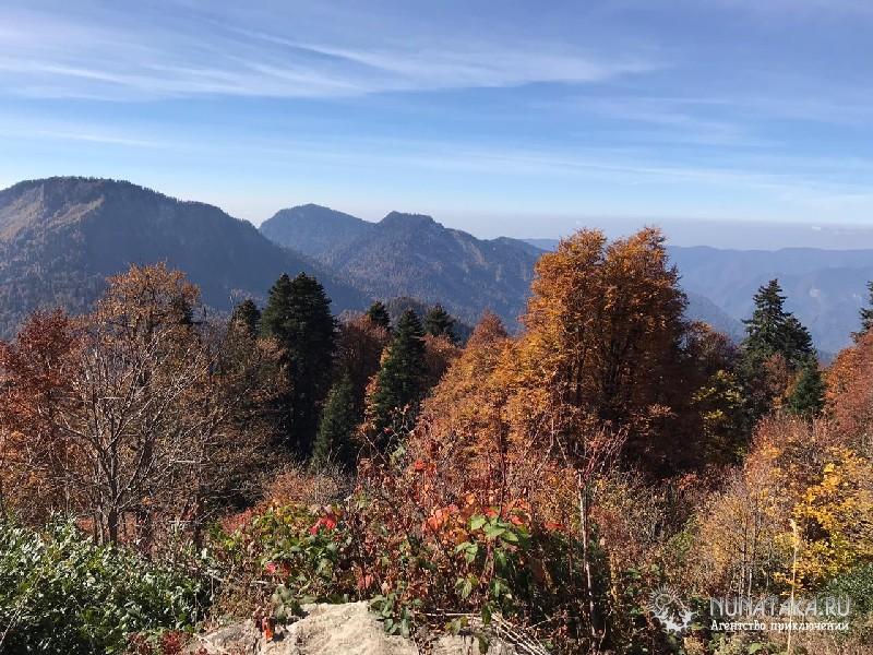 Осень на границе альпийской зоны