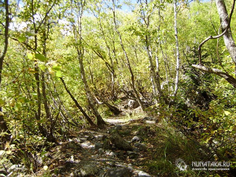 Тропа к Алибекскому водопаду