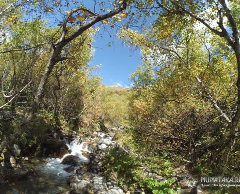 Тропа к Алибекскому водопаду оборудована мостками