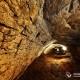 Большая Кривенковская пещера в горе Небеб